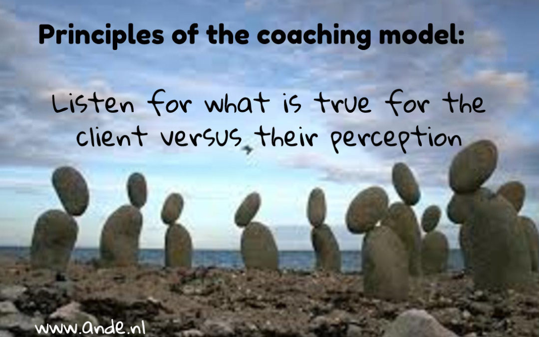 Principles of the coaching models