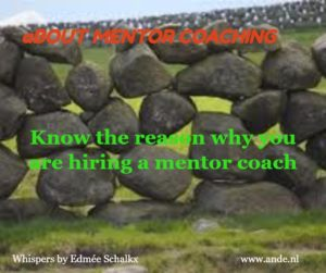 mentor 1