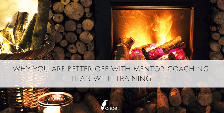 Why You Are Better off With Mentor Coaching Than With Training