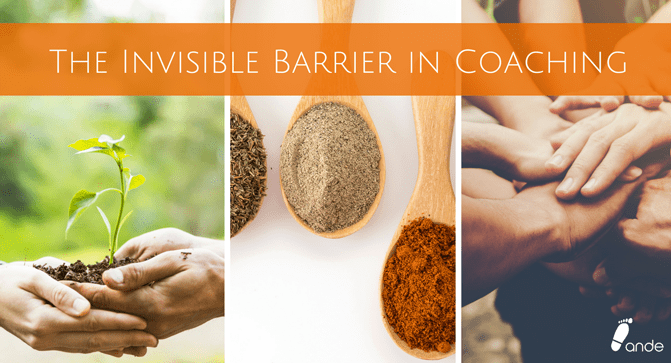 The Invisible Barrier in Coaching